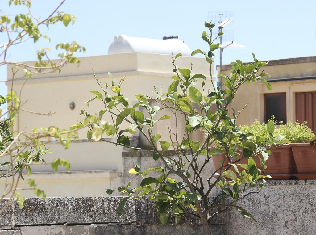 Albergo_Sicilia_Hotel_Sicilia_Avola_B&B_Avola_Albergo_Sicilia_Piazza_centro_mare_bedandbreakfarsavola_10